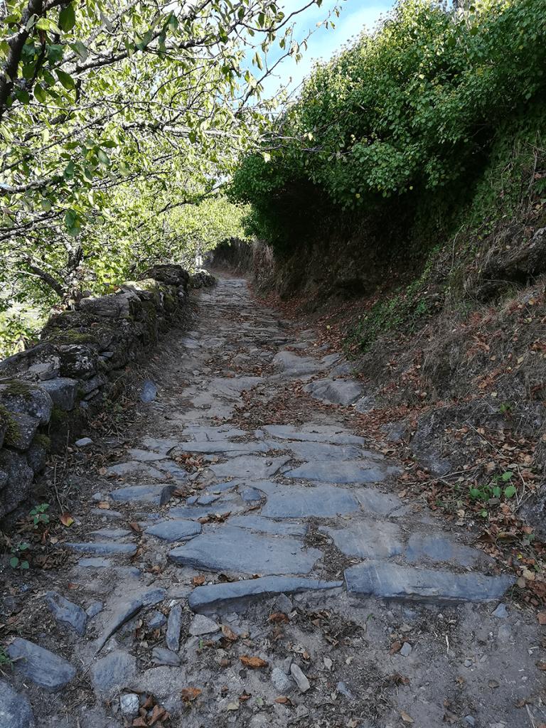Vía Romana Belesar